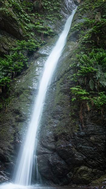 宿谷の滝2@毛呂山