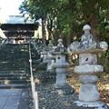 Photos: 重要文化財の石灯籠