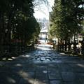 Photos: 随身門から見た参道