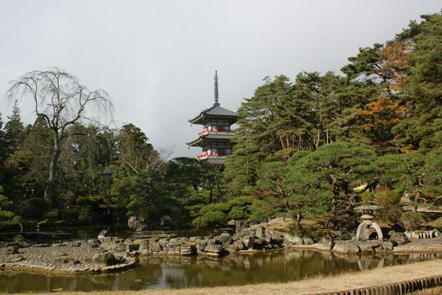 池と三重塔