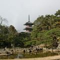 Photos: 池と三重塔