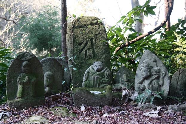 Photos: 2009.01.17 鎌倉 瑞泉寺 狸地蔵