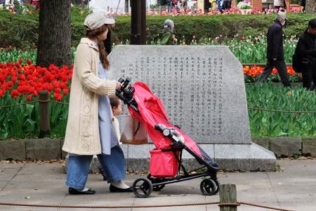 2017.04.10 横浜公園 チューリップ散歩