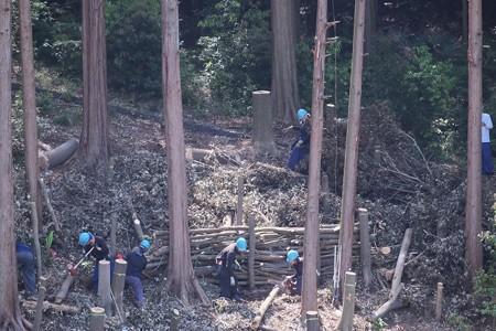 2017.05.29 追分市民の森 里山整備