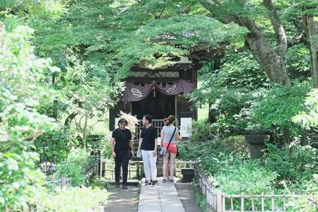 2017.08.05 円覚寺 黄梅園 観音堂