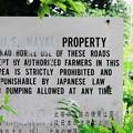 写真: 2018.05.31 瀬谷市民の森 米国の財産