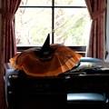 写真: 2018.10.19 外交官の家 書斎 Happy Halloween 準備
