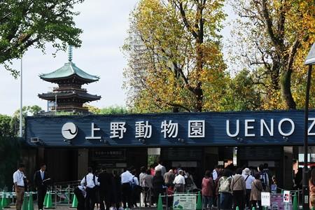 2018.11.07 上野公園 動物園入口