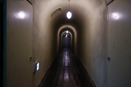 2018.11.26 四万温泉 積善館 浪漫のトンネル