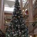 2018.12.08 横浜ランドマークタワー クリスマスツリー 8m