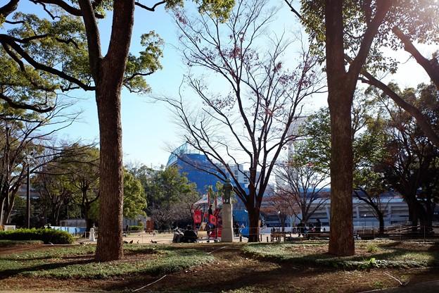 2019.01.03 横浜公園 公園の隅の景色