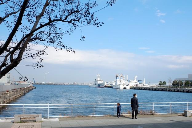 2019.01.20 MARINE & WALK YOKOHAMA 海