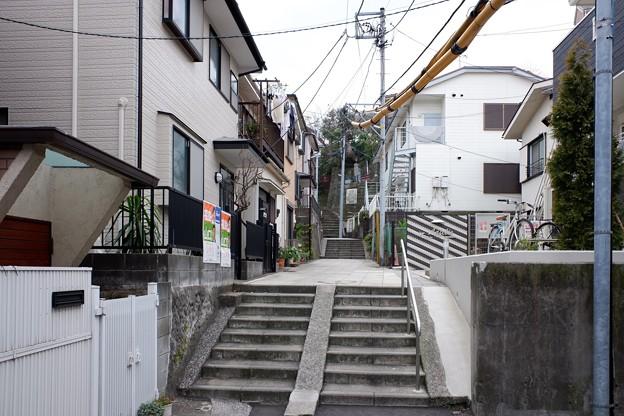 2019.01.20 山手 女学院への道