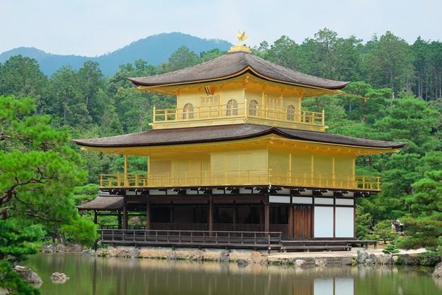Photos: 2019.08.01 金閣寺