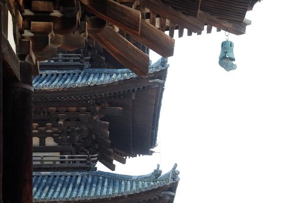 2019.08.02 興福寺 東金堂から五重塔