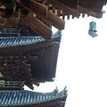 Photos: 2019.08.02 興福寺 東金堂から五重塔