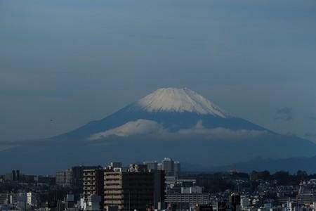 2019.10.26 外交官の家 庭 富士山