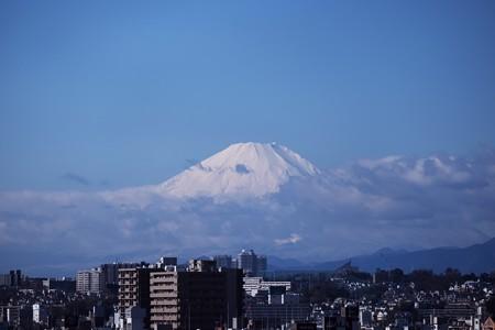 2019.11.29 外交官の家 富士山