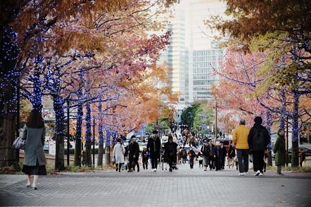 2019.12.08 横浜美術館前