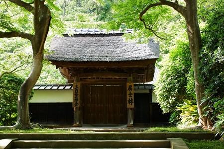 2020.06.05 円覚寺 居士林