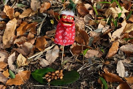2020.12.29 瀬谷市民の森 迎春