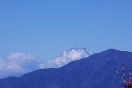 2021.01.02 瀬谷市民の森 富士山