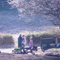 Photos: 2021.02.21 追分市民の森 畑 梅の木の下