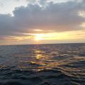 写真: 今朝の海