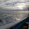 Photos: ヒラメ釣り