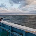 Photos: 2020.11.09.ヒラメ釣りに