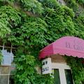 Photos: cafe EL GRECO