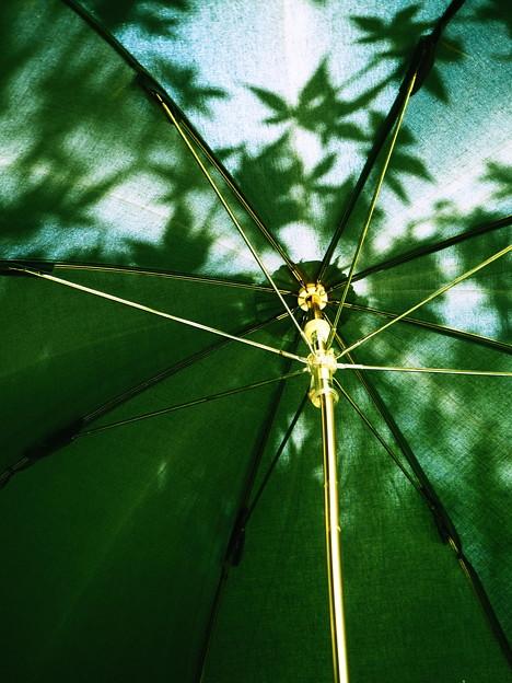 「第133回モノコン」 影生む傘