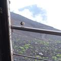 富士山にいた鳥さん ~名前を教えてください~
