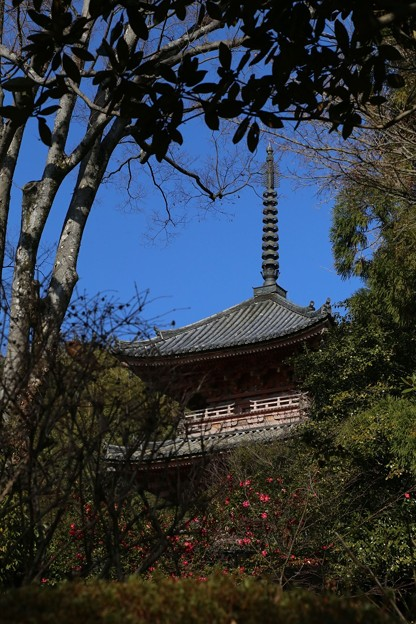 宝積寺の塔
