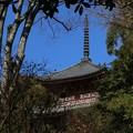 Photos: 宝積寺の塔
