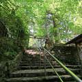 Photos: 猿丸神社表参道