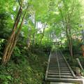 Photos: 猿丸神社裏参道