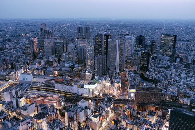 写真: 西新宿