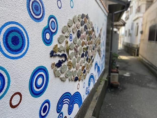 雑賀崎漁港5