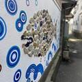 Photos: 雑賀崎漁港5