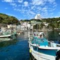 Photos: 雑賀崎漁港6