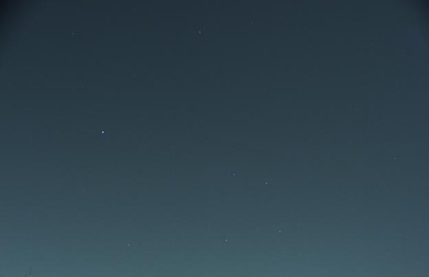 Photos: 星座からす2020-02-08-1546_7-CapObj_0656