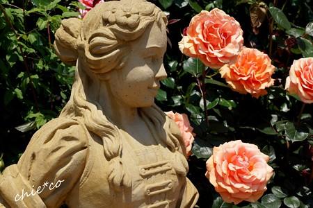 花菜ガーデン-355