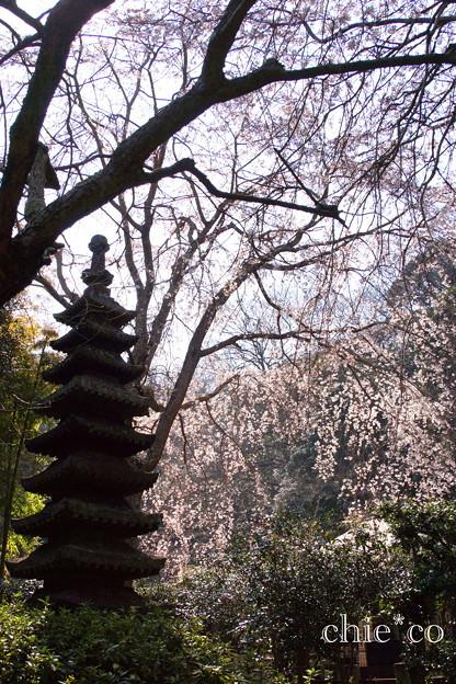 鎌倉-312