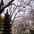 写真: 鎌倉-312