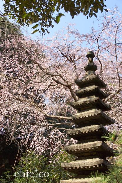 鎌倉-319