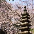 写真: 鎌倉-319