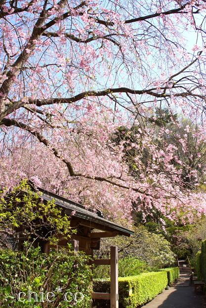 北鎌倉-396