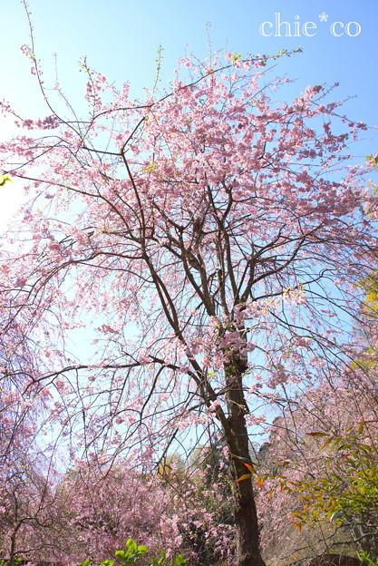 北鎌倉-402