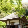 写真: 北鎌倉-428